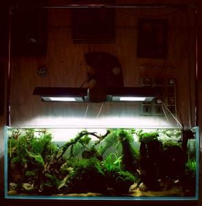 Новый аквариум 120x45x45