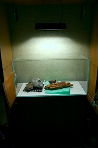 Мой новый аквариум на штатном месте